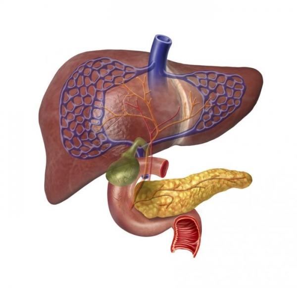 Тайны черных трансплантологов