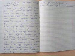 Тема для школьных сочинений: Ольга Бузова как герой культуры современной России