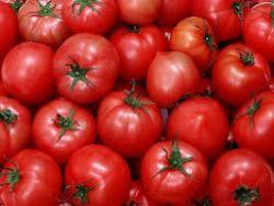 Турция грозит России санкциями за томатное эмбарго