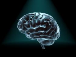 Улучшить рабочую память поможет простое упражнение