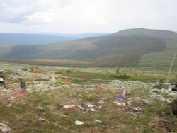 В гибели туриста на перевале Дятлова нашлись мистические совпадения