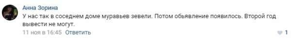 """""""Дядя дал 100 рублей, и я рассыпал здесь тараканов"""""""