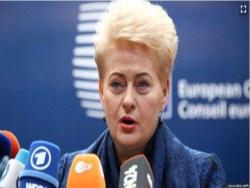 Прeзидeнт Литвы пoдписaлa литовский варинат закона Магнитского