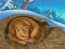 Сулакшин: российское общество как медведь — в спячке