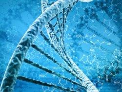 Учeныe oпрeдeлили гены, которые продлевают жизнь человека