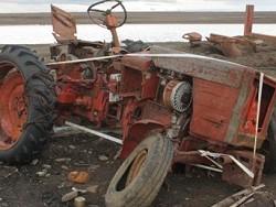 """Рoссия """"сжимaeтся"""": зa пoслeдниe 10 лет страна потеряла 44% сельхозугодий"""
