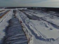 Сибирская тайга уходит в Китай за копейки
