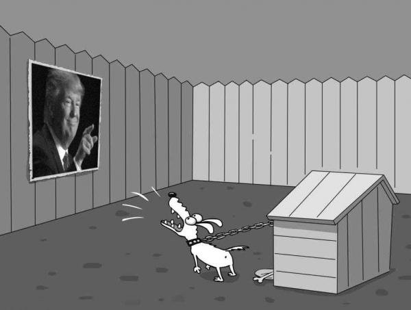 Photo of Как правительство должно ответить на санкции, или про Слона и Моську