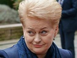 Президент Литвы не получила приглашения на инаугурацию Путина