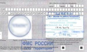 Как зарегистрировать компанию на территории России?