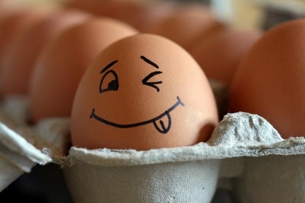 Photo of Скорлупа яиц — идеальный источник кальция