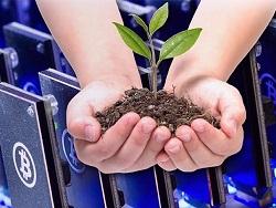 Российский завод удобрений стал крупнейшей майнинговой фермой страны