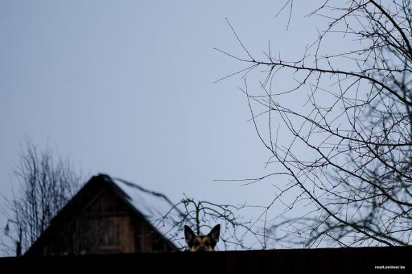 Сладкие развалины. Репортаж о рассыпающейся белорусской провинции6