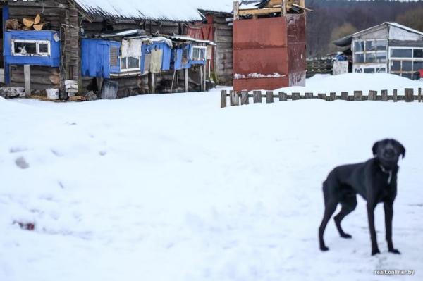 Сладкие развалины. Репортаж о рассыпающейся белорусской провинции3