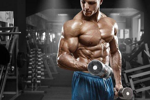 Photo of Семь правил: как ускорить мышечный рост