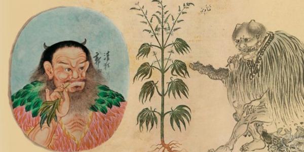 Древние китайцы использовали коноплю в погребальных ритуалах0