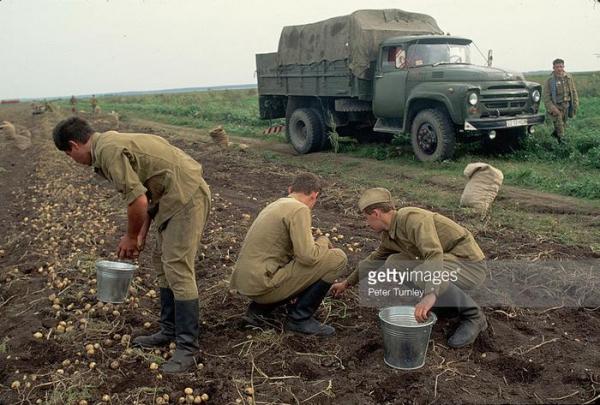 Миф про «натуральные советские продукты»3