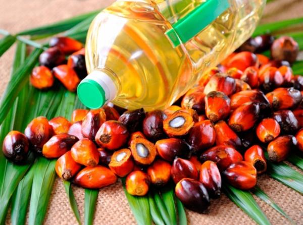 Пальмовое масло. Польза и вред0