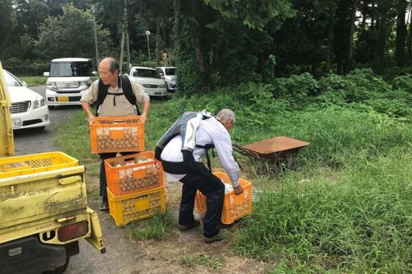 Photo of Пожилые жители Японии начали носить экзоскелеты, чтобы продолжать работать в старости