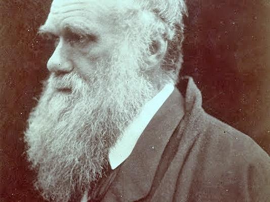Photo of Церковь признала теорию Дарвина