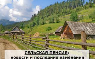 Photo of Сельская пенсия: влияние проведенной реформы и новости