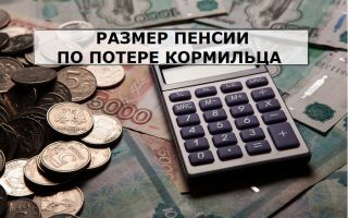 Пенсия по потере кормильца украина 2020