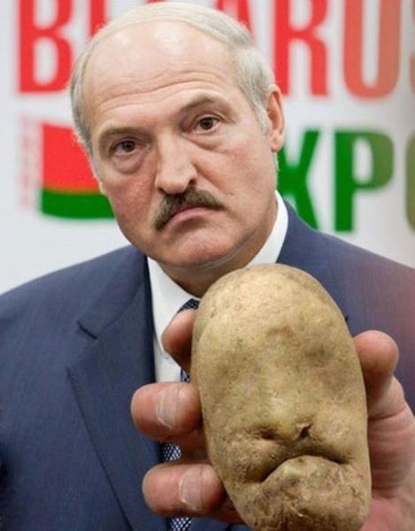 Photo of А председатель колхоза сына своего в колхозе оставит работать?