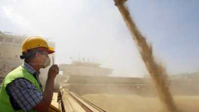 Photo of Вслед за нефтью и русская пшеница скоро никому не будет нужна