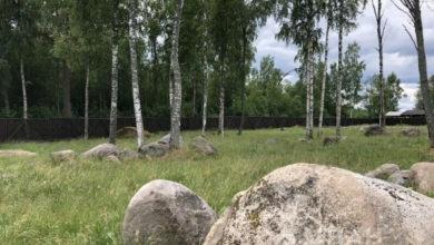 Photo of В Ленобласти разрушили «Русский Стоунхендж»